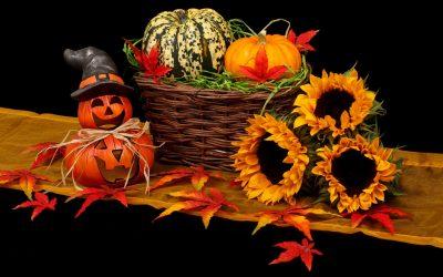 Vestiti ecostumi per bambini e bambini per Halloween